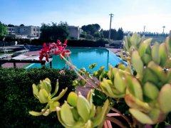 piscina_catalano_70.jpg